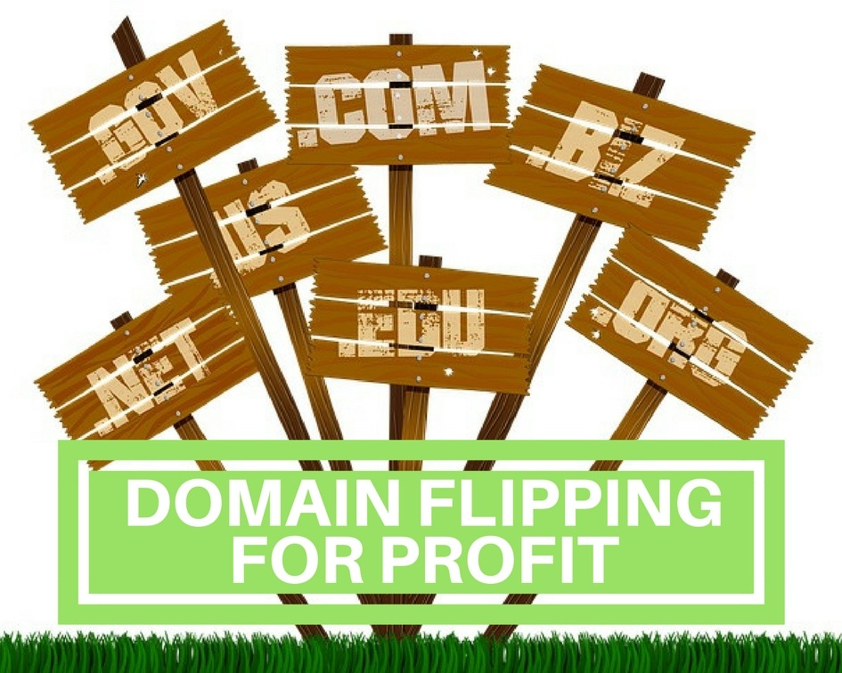 make money flipping domain names